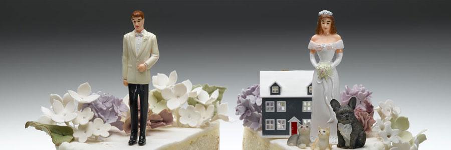 Virginia Divorce – Equitable Distribution of Pre-Marital Property after the David Case